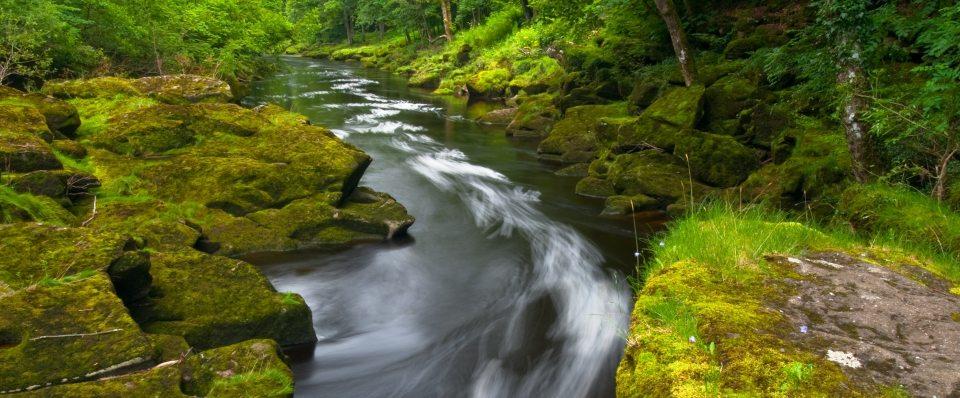 fiume_zen