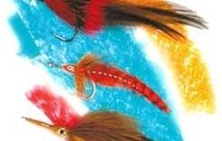 Quanto è importante il colore, dal punto di vista del pesce?