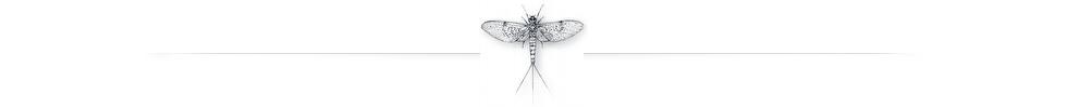 mayfly-spent-980