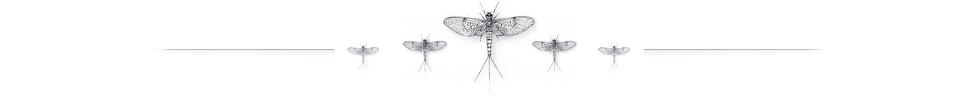 mayfly-triade-980