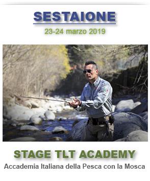 Widget-corso-stage-sestaione-2019